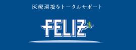 株式会社フェリス
